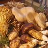 国産の松茸入荷してます(ただ、すぐ売り切れる) 神戸三宮の地鶏料理は安東へ