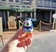 弾丸ディズニーランド・リゾート(エッグストラバガンザ) / Weekend Getaway to Disneyland Resort (Eggstravaganza)