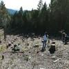 11月天使の森植樹&芋掘り【おかざき森のようちえん】
