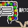 【水素セラピスト検定】ビューティーケア編 『腸内フローラ Part.4』