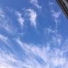 水曜日 綺麗な巻雲と夕焼け。