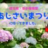 埼玉県・幸手権現堂堤のあじさいまつりへ!見頃・名所の理由を紹介!