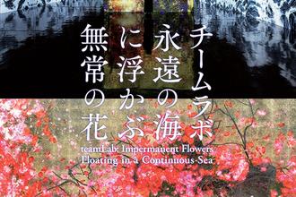 チームラボが金沢21世紀美術館にやってくる!「チームラボ 永遠の海に浮かぶ無常の花」は2019年8月9日から