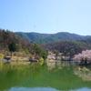 【チ鹿頭神社】とすすき川でお散歩・with兄ちゃん(*'ω'*)☆彡
