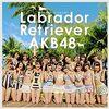 【アイドルレコメンド】『ラブラドール・レトリバー /  AKB48』