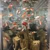 納涼、金魚が出迎える日本橋三越新館