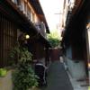 息子氏、京都へ行く 1