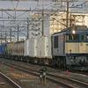 11月3日撮影 武蔵野線 南流山駅  貨物列車を撮影 【EF64-1000原色の鹿島貨物1094ㇾ】