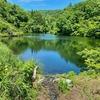 頭無堤(新潟県小千谷)