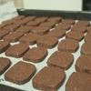 お手軽!ほろっと苦いココアクッキーのレシピ!