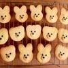 子どもと一緒に簡単さくさく型抜きクッキー☆ジップロックで生地をお手軽に冷凍・冷蔵保存☆保存期間と方法紹介☆