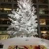 クリスマスツリー at kitte