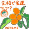 金柑で金運アップと風邪予防&中華風鶏七草がゆ(20180107_01)