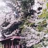 法華寺のニンジンボク