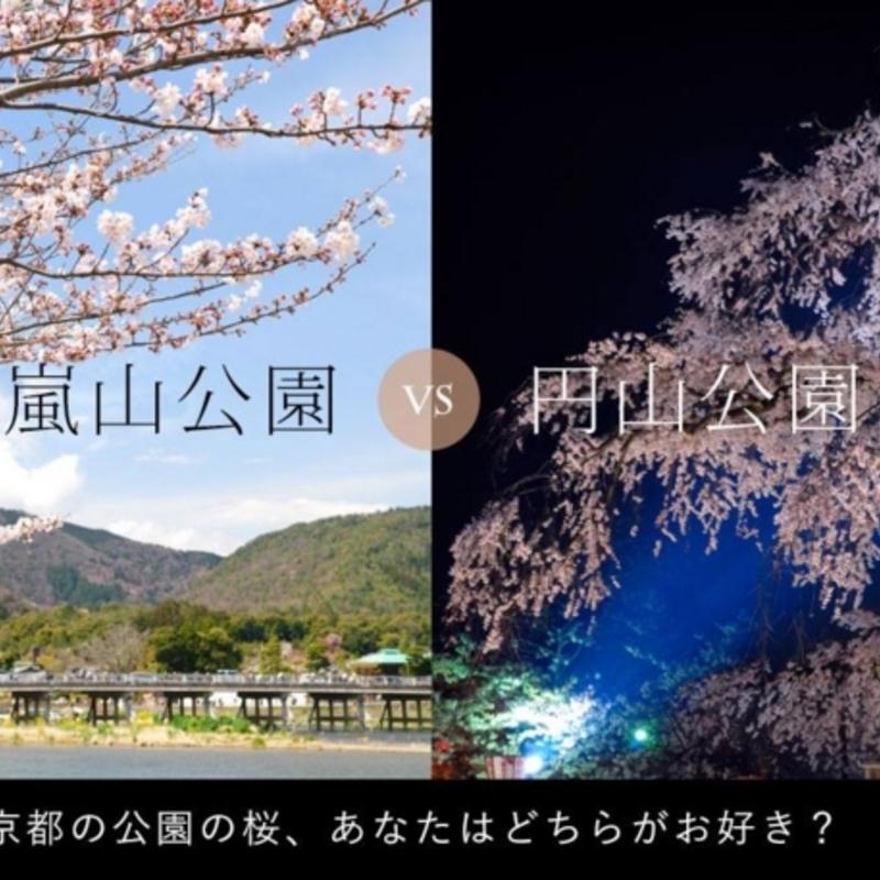 京都あるある大賞第2弾「京都の公園の桜、どちらがお好き?」投票結果発表