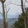 西沢から天子ヶ岳4