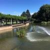 散歩:武蔵国分寺公園〜お鷹の道
