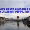 スイスに留学した話part1