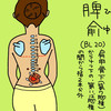 膀胱経(BL)20 脾兪(ひゆ)