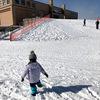 札幌西区の雪遊び【農試公園】