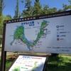 春のお散歩、東京都23区最大の公園、水元公園を歩く!