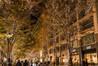 丸の内イルミネーションが今年も開催!シャンパンゴールドのLEDが美しい