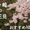 【茅ヶ崎の花見情報】湘南で花見しませんか?公園や名所おすすめ10選