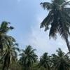 スリランカバンダラナイケ国際空港までの道のり