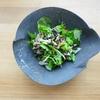 アマランサスと日干し野菜のサラダ ∞ もずくのとろりんすうぷ