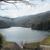 春の昭和池散策