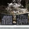 道の駅平成の裏山に石碑「令和の道標」誕生!!