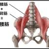 Vol.8  股関節が使えないから背すじが伸びない 膝を曲げろと習う