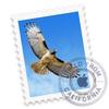 Mail.app(Mac)のとっても地味な便利機能