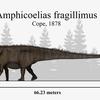 幻となった史上最大の恐竜。体長・体重の比較【アンフィコエリアス・ブルハトカヨサウルス・セイスモサウルス】
