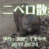 『ミニベロ散歩(伊丹〜池田〜千里中央)』Tern Link N8でポタリング