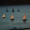 ヨットってどんな種類があるの?セーリング競技で使われる艇10選