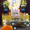 【youtube動画】2017年1月29日(日)『関西月例冥想会』スマナサーラ長老指導