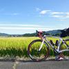 台風から逃げ切れ ~ 茨城から新潟まで285km走ってきた話 Part1