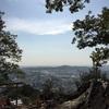 奥武蔵、日和田山と箱根、金時山に行ってきました!山、楽しいです!