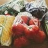 新鮮な野菜をシンプルに料理したら、食事作りのストレスからちょっとだけ解放された!
