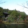 圓成寺の紅葉