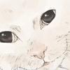 【イラスト】『catlog』愛用猫:へちまちゃん【似顔絵】