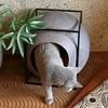 ネコと暮らす家作り①脱走を防ぐ