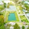 桜満開の駿府城公園を、ミニチュア写真化
