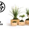 新潟から「もっと街を素敵にしたい」を発信する企業、テクスファームが関わるサステイナブルな環境プロダクト、MASUMOSS(マスモス)