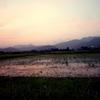 夕方の散歩、今日は岡野あじさい農道です。ぎりぎり夕焼け。
