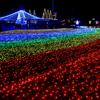 """木曽三川公園のイルミネーション。今年のテーマは""""虹"""""""