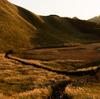 【奈良】黄金に輝く曽爾高原~「その者蒼き衣を纏いて金色の野に降りたつべし」(from「風の谷のナウシカ」)
