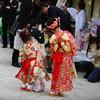 Kimono Flea Market ICHIROYA's News Letter No.769