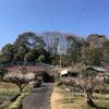 川崎市麻生区柿生地区の横穴墓巡り
